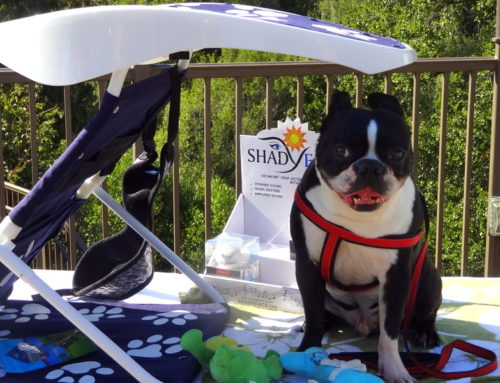 """ShadyPaws Sunshades & Furry Friends Rescue Network Together For """"WoofStock"""" 4th Annual Furry Friends Rescue Charity"""