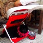 ShadyPaws Pet Travel Canopy 11