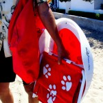 ShadyPaws Pet Travel Canopy 17