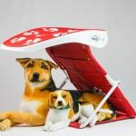 ShadyPaws Pet Travel Canopy 3