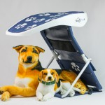 ShadyPaws Pet Travel Canopy 5
