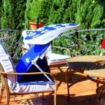 ShadyPaws Pet Travel Canopy 7