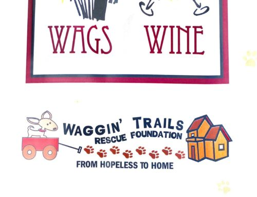 """Waggin Trails"" Dog Rescue Foundation"