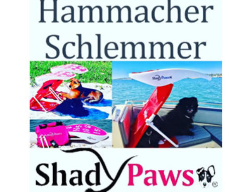 Hammacher Schlemmer has partnered with ShadyPaws,Inc. for Spring 2019 Retail Sales!